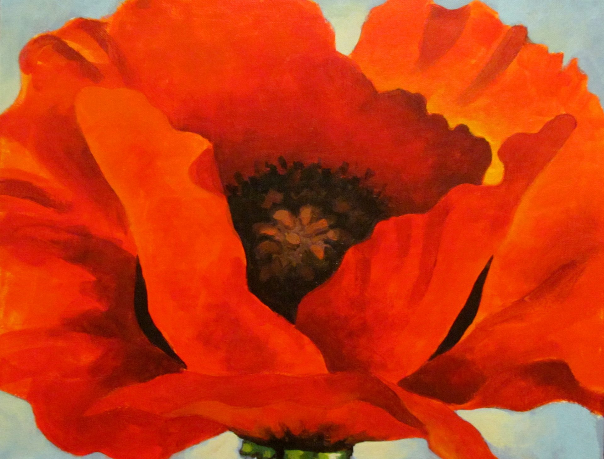 Georgia okeefes red poppy visarts mightylinksfo Choice Image