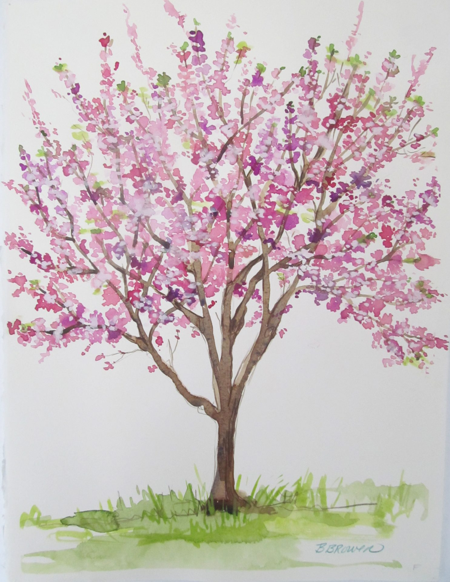 Beauty Of Watercolor Cherry Blossom Tree Visarts